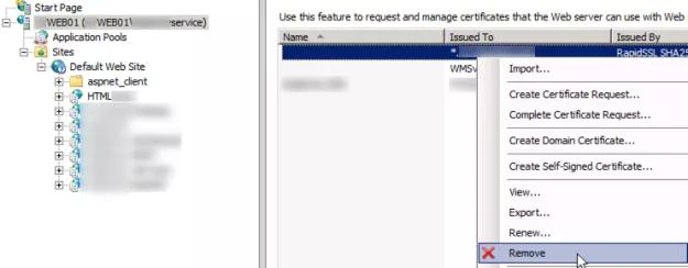 delete old ssl certificate IIS